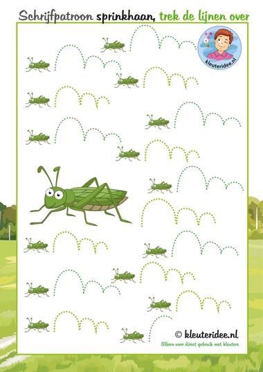 Schrijfpatroon sprinkhaan, thema insecten voor kleuters, kleuteridee.nl, free printable.
