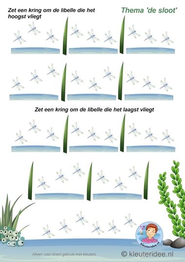 Welke libelle vliegt het hoogst-laagst , thema de sloot, kleuteridee, Which dragonfly flying the highest -lowest, free printable.
