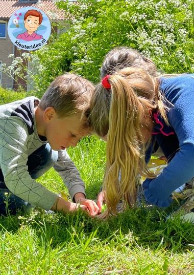 Buitenles, insecten en kriebelbeestjes zoeken, kleuteridee, thema insecten