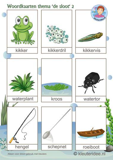 Woordkaarten voor kleuters, thema 'de sloot'2, kleuteridee.nl, preschool pond theme