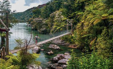 Bark Bay Falls swing bridge at Abel Tasman National Park