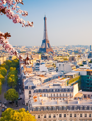 A view of Paris on a spring evening