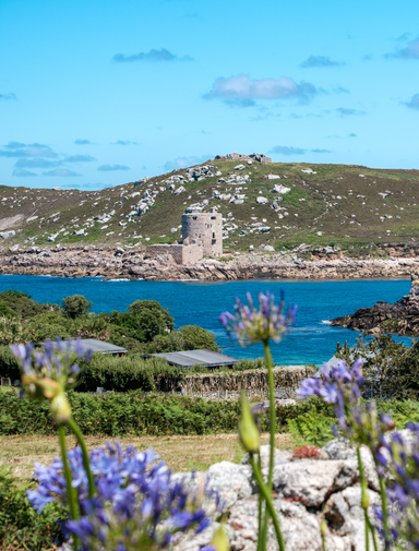 Flowers and blue sky on the Isles of Scilly, UK