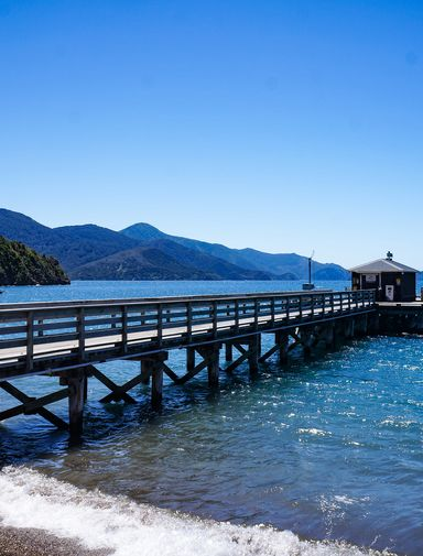 The wharf at French Pass
