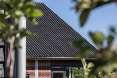 Neptunus corrugated panels, black, Voorthuizen, Netherlands