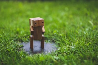 Wooden robot in front of grass