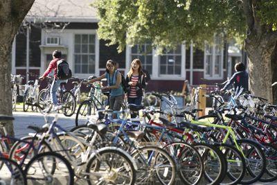 Uc Davis Bikes