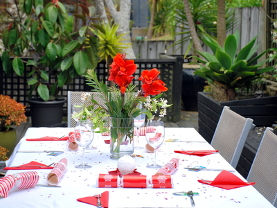 A table set for Christmas lunch outside