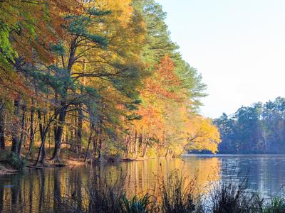 Lake Johnson in Raleigh, NC during fall season