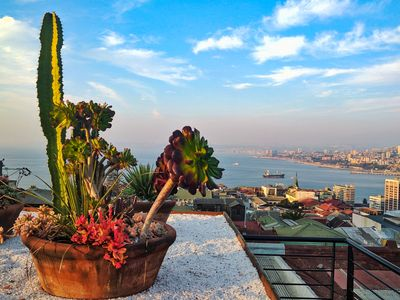 The view from the rooftop terrace at our Valparaiso hotel
