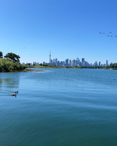 Views from Tommy Thompson Park