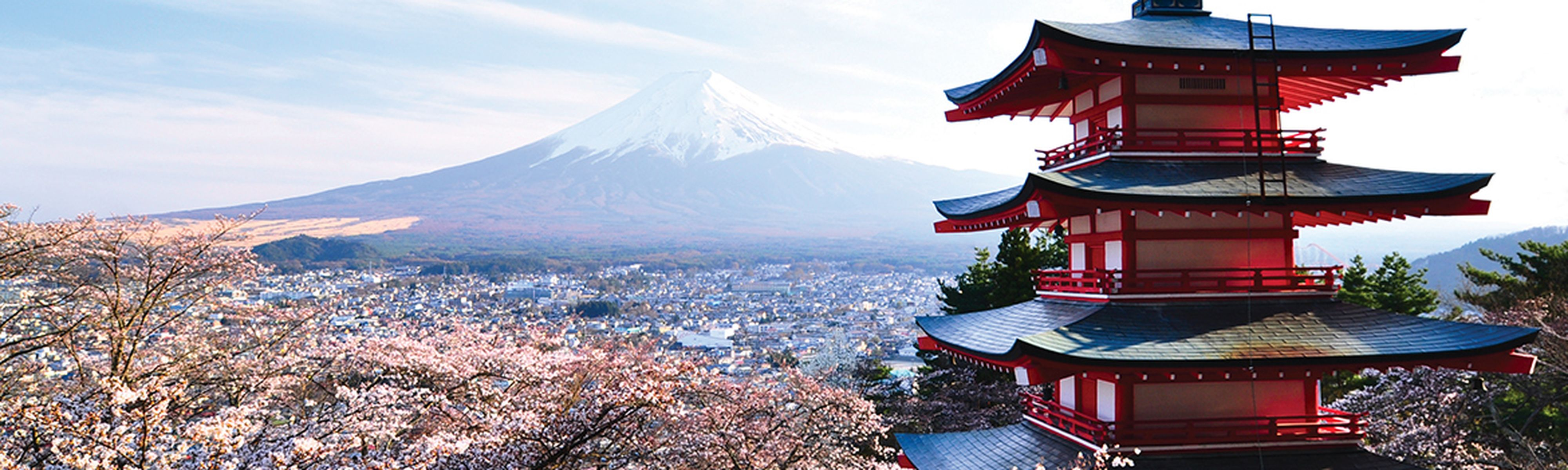 Chureito Pagoda and Mt. Fuji in spring with cherry blossoms