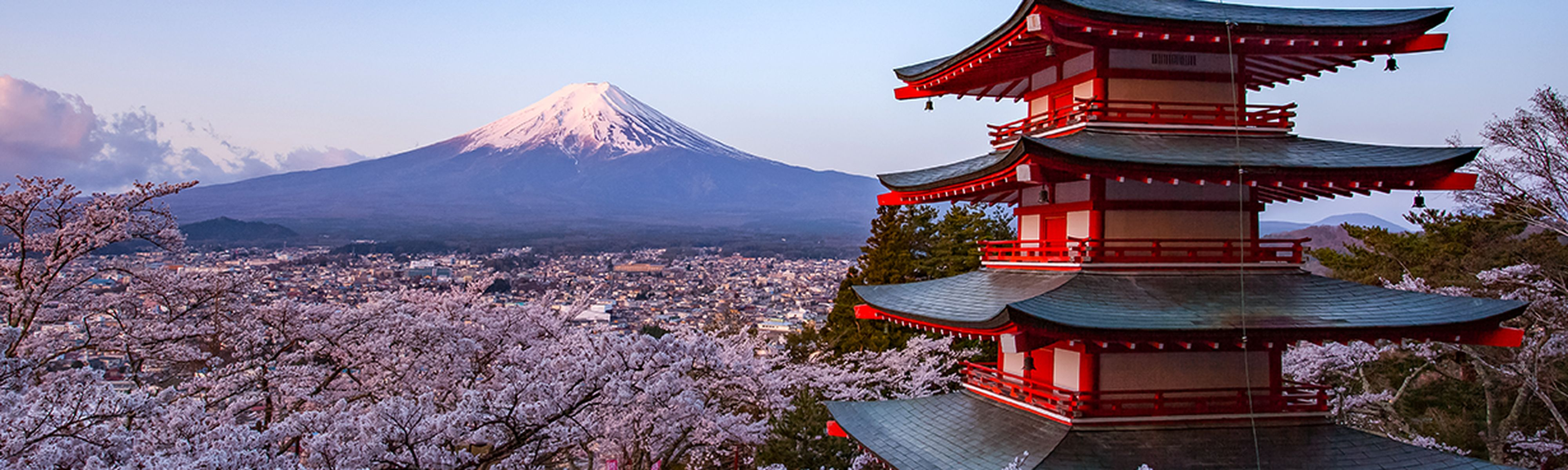 Shrine in Japan with view of Mount Fuji and Cherry Blossoms