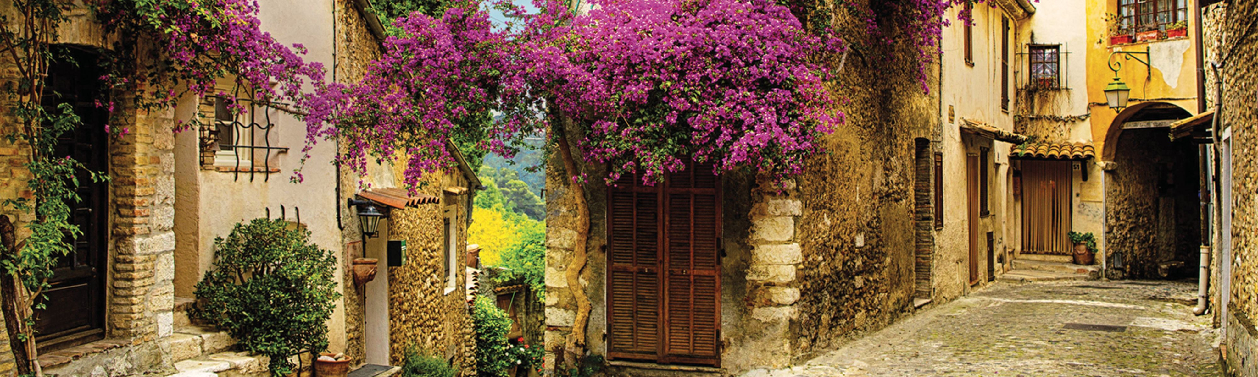 old building with purple overhanging flowers in provence, france