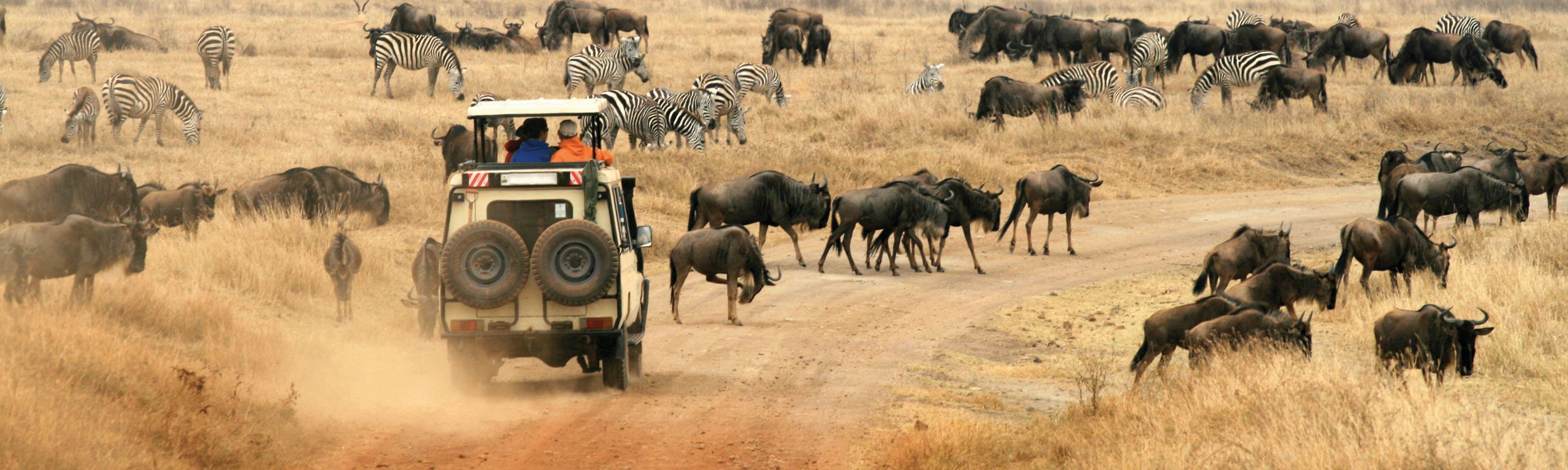 515f9da19726 Kenya Wildlife Safari | EF Go Ahead Tours