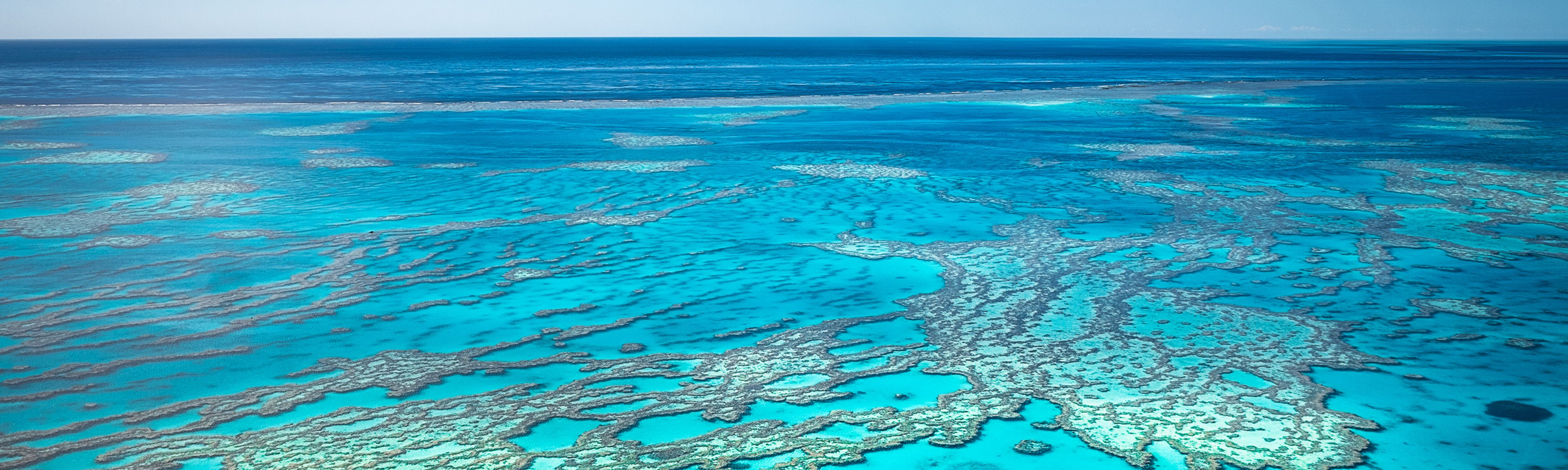 crystal blue water covering the great barrier reef in australia