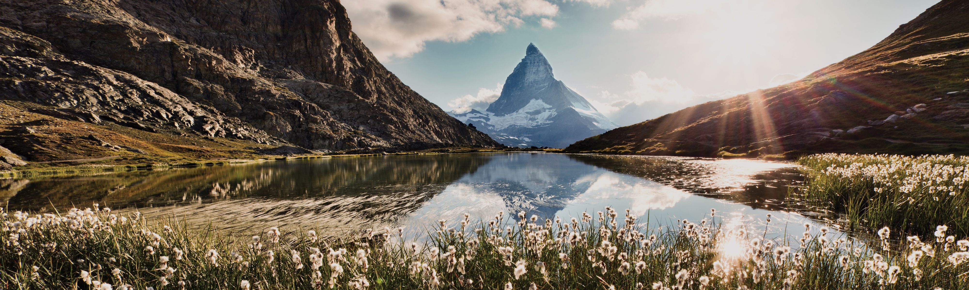white flowers surrounding a lake by Matterhorn mountain in Switzerland