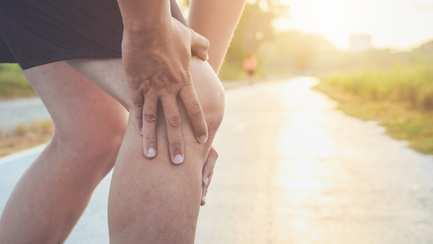 Ratgeber Muskeln Gelenke Knochen