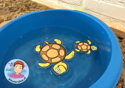 thematafel schildpad, kleuteridee, schildpaddenstrand met eieren 7