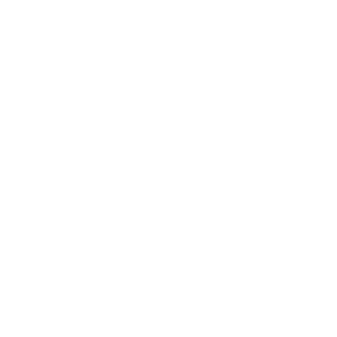 Logo Blin nutrition