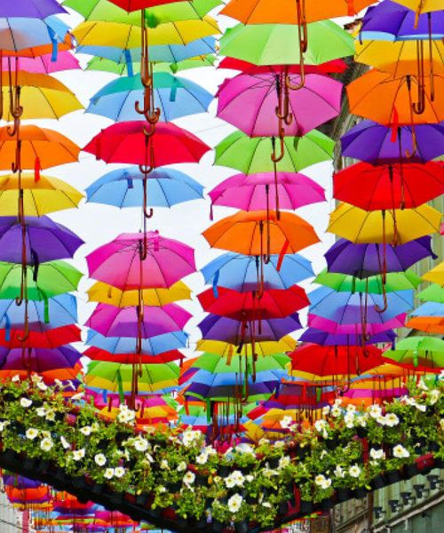 bright colorful open umbrellas hanging above street