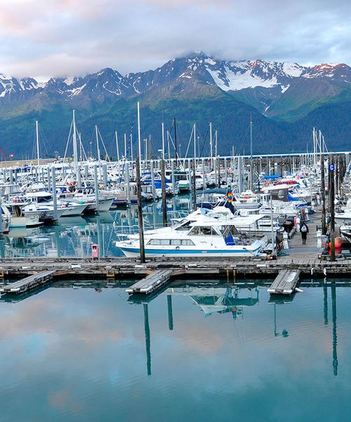 marina of boats in seward alaska surrounded by snow covered peaks of mountains