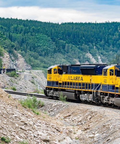 yellow train that says alaska on it winding through the scenic forests