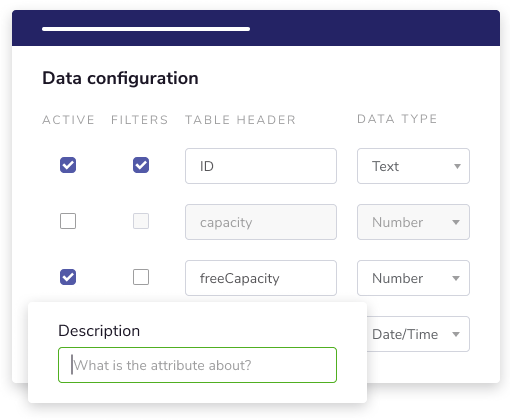 Describe your data set