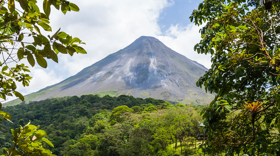 view of arenal volcano through lush rainforest trees in costa rica
