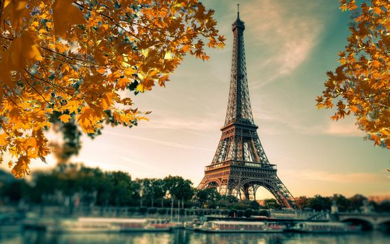 yellow leaves on trees surrounding eiffel tower in paris france