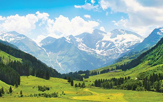 snow capped austrian alps surrounded by bright green valley in salzburg