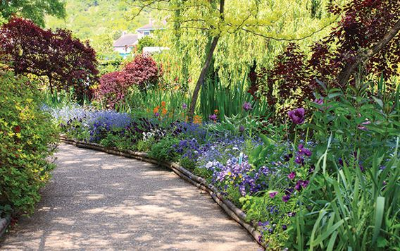 paved walk way lined with purple flowers and green shrubs in france