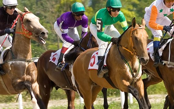 men in colorful uniforms racing on horses