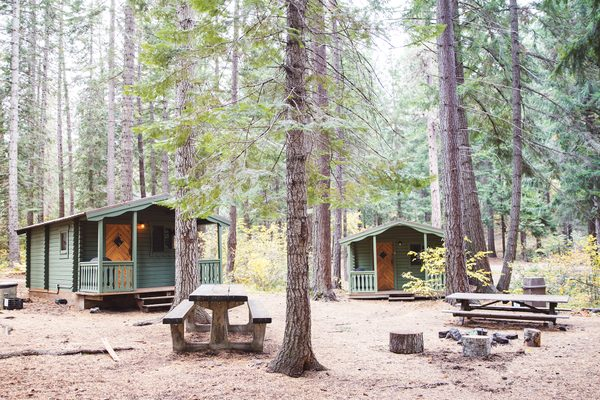 Rustic Camp Cabin image 0