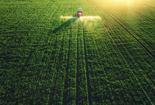 Land and agriculture briefing note