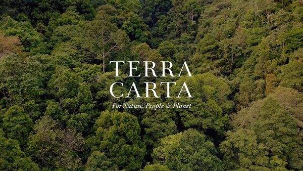 terra-carta-newsletter-poster.webp