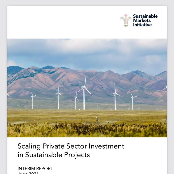 Scaling Private Sector Investment in Sustainable Projects - cover