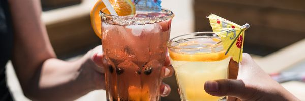 Spork Bytes Brings the Party to You With New Alcohol Program