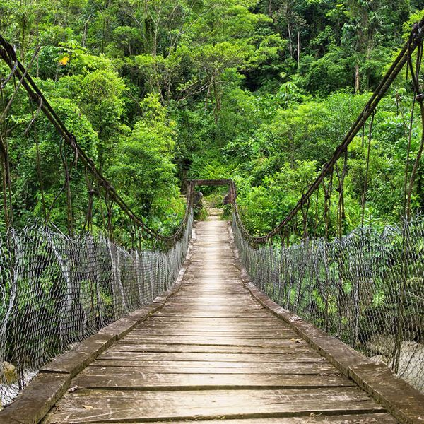 wooden and rope bridge crossing over river in the amazon rainforest
