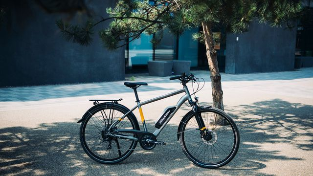 Picture of an Array ebike