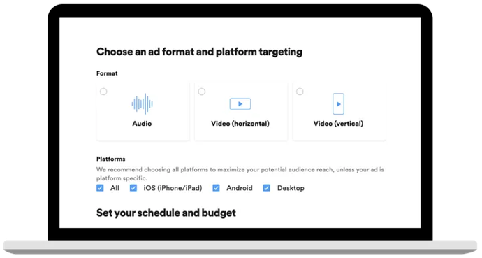 formaat en platform targeten spotify video ads