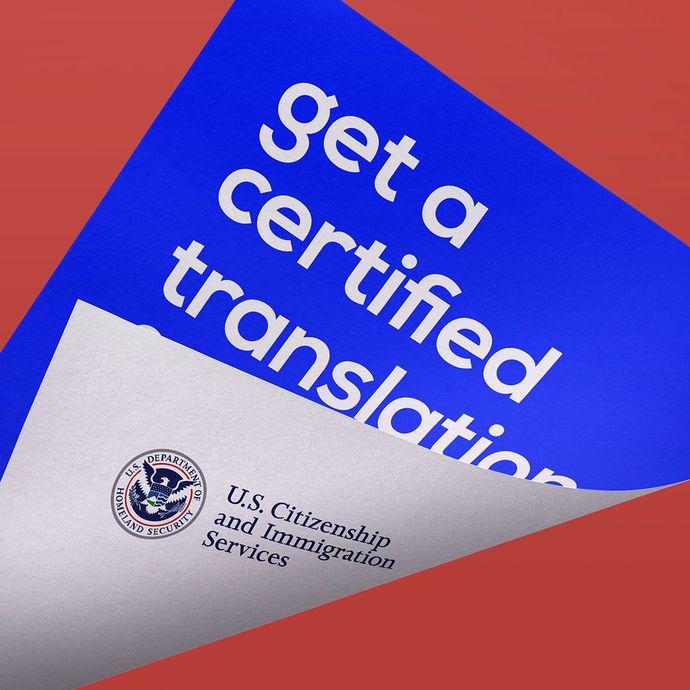 certified spanish translator