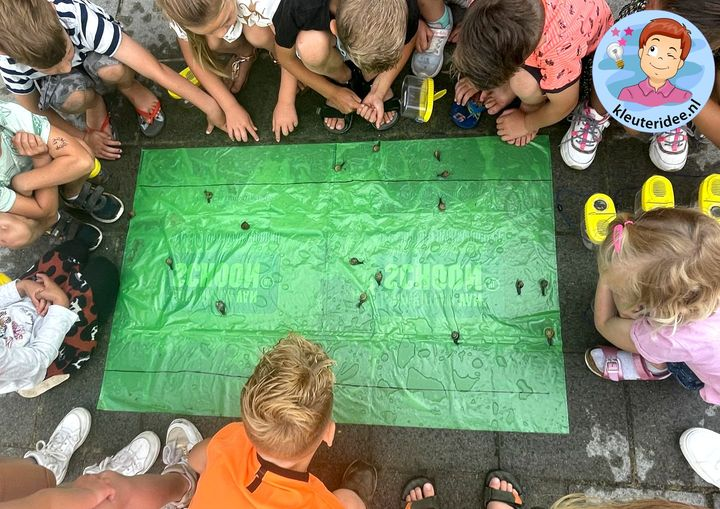 Slakkenrace, kleuteridee, thema insecten en kriebelbeestjes