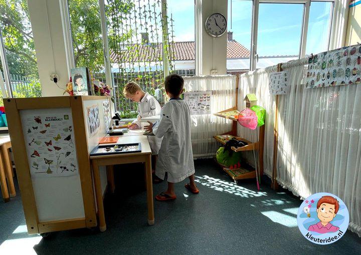 Onderzoek hoek thema insecten kleuters, minibeasts Kindergarten theme, kleuteridee