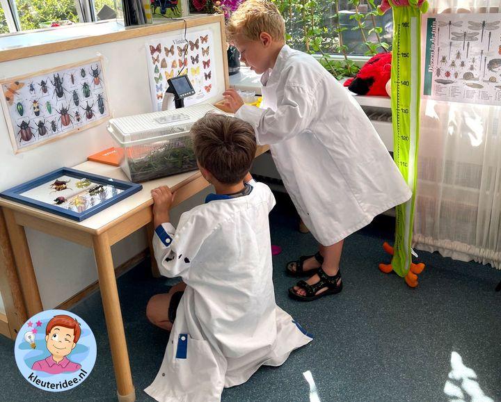 Onderzoek hoek thema insecten kleuters, minibeasts Kindergarten theme, kleuteridee 1