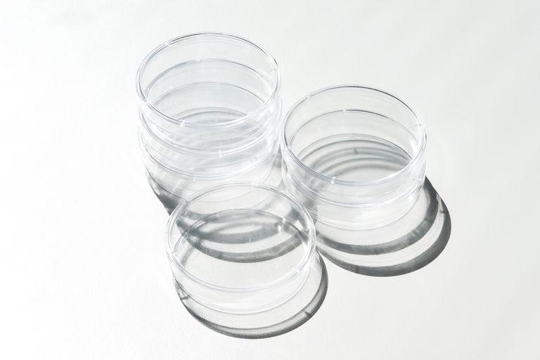 Three empty petri dishes