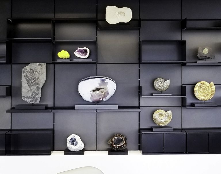 Miscellaneous small fossils and geodes are decorating black shelves held up against a black System 1224 wall.
