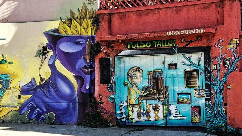 Street art on a shop's doors in Valparaiso, Chile