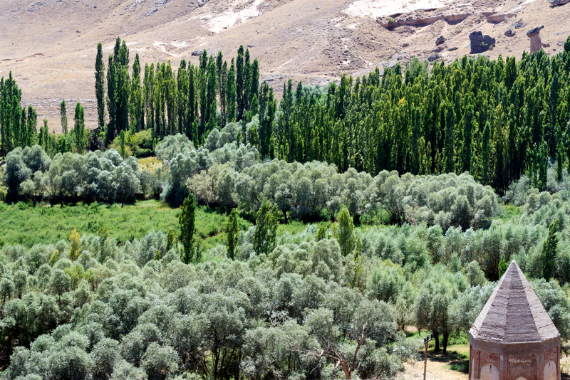View of Ilhara Valley in Cappadocia