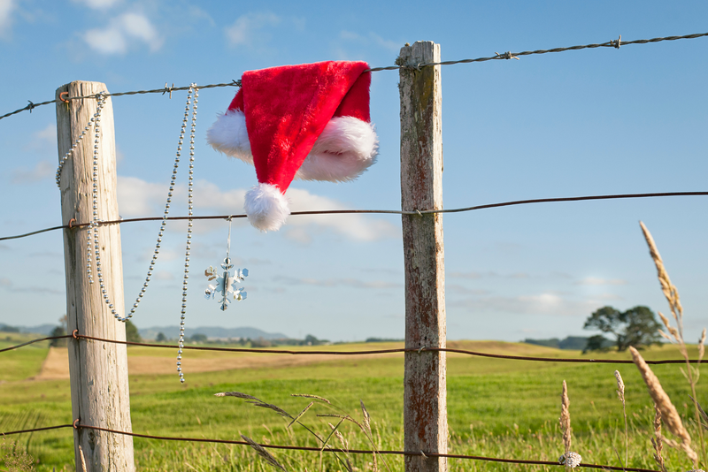 A santa hat hangs on a fence in rural New Zealand